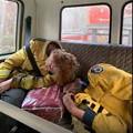 オーストラリア … 疲れはて仮眠の 消防士 … ひつじの 避難誘導する ボーダーコリー  …  早く鎮火しますように1