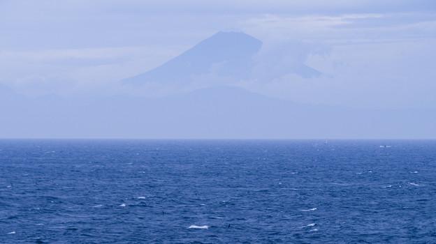 Photos: かすみの富士山