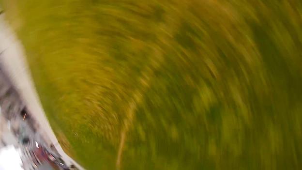 写真: 写真のブレではありません。横宙返り中