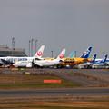 Photos: JA306J 天皇陛下搭乗機
