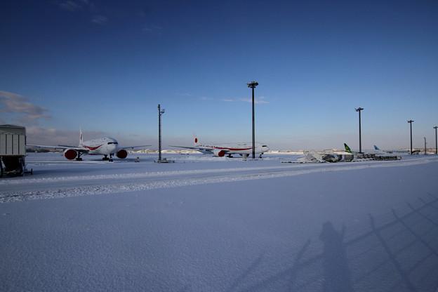 駐機場 大雪の朝