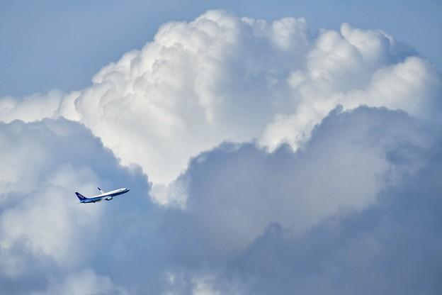 おっきな雲