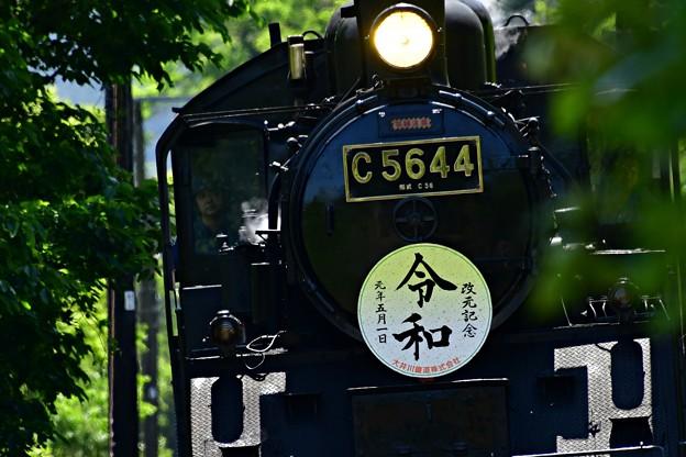 Photos: 改元記念
