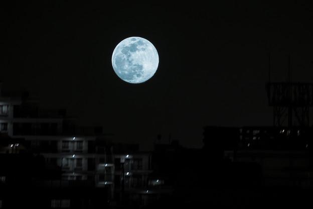 Photos: Tokyo landscap…a night full moon…