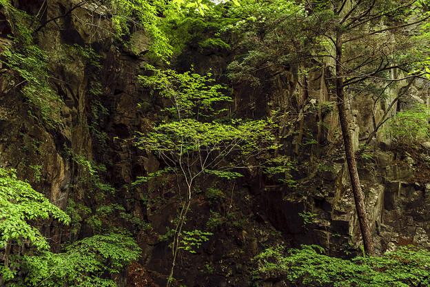 滝へ続く崖
