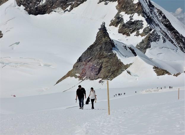 雪原ハイキング