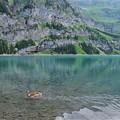 Photos: エッシネン湖