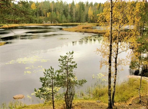 黄葉した湖沼