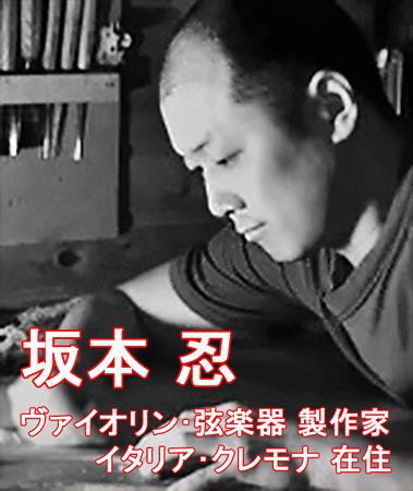 ヴァイオリン、弦楽器製作家 坂本忍 さかもとしのぶ イタリア・クレモナ在住