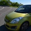 写真: 新緑色