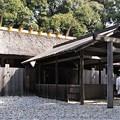 Photos: 神社ガール