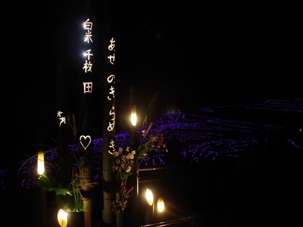 夜の千枚田