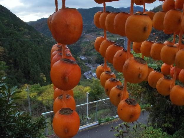Photos: 柿簾から望む