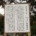 Photos: 相撲神社2