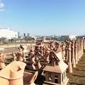 Photos: 今城塚古墳1