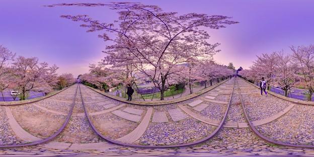 京都 蹴上 インクライン 桜 360度パノラマ写真