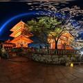 写真: 京都・清水寺 ライトアップ 360度パノラマ写真