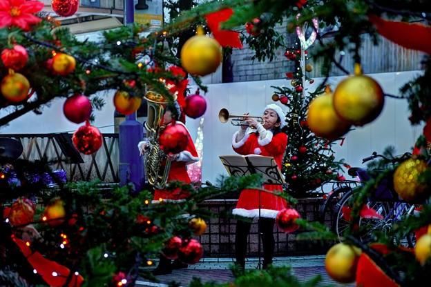 クリスマスツリーの中に見えた風景 紺屋町にて