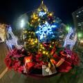 Photos: 青葉シンボルロードのクリスマスツリー