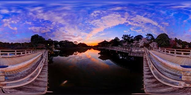 奈良公園 鷺池 浮見堂 夕景 360度パノラマ写真