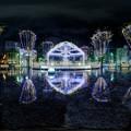青葉シンボルロード、雨の日のイルミネーション 360度パノラマ写真