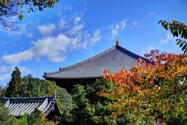 東大寺境内(1)