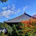 Photos: 東大寺境内(1)