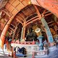 Photos: 東大寺大仏殿