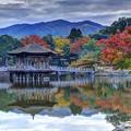 Photos: 奈良公園 鷺池 浮見堂