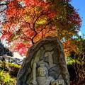 Photos: お不動様 (静岡市葵区 光鏡院)