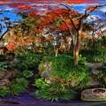 駿府城公園 紅葉山庭園 紅葉 360度パノラマ写真(2)