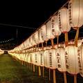 Photos: 静岡市 護国神社 みたま祭 (2)