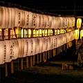 Photos: 静岡市 護国神社 みたま祭 (4)