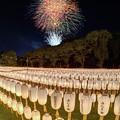 静岡市 護国神社 みたま祭 (6)