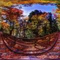 紅葉、井川湖畔遊歩道 360度パノラマ写真(1)