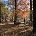 Photos: 練馬区石神井公園