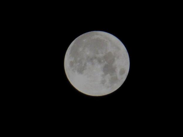 Photos: full moon スタージェンムーン