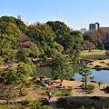 Photos: 六義園の秋
