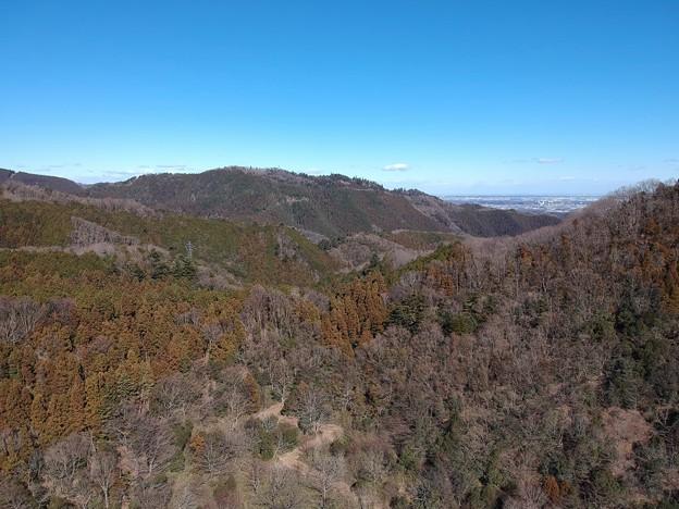 津久井の山から見た高尾山