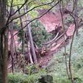 芦ノ湖周辺のがけ崩れ