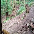 Photos: 名手~関東ふれあいの道への登山道 崩落個所
