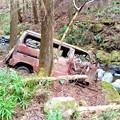Photos: 清川村山中の放置車両