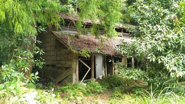 山の神沢(厚木市)の廃屋