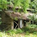 Photos: 山の神沢(厚木市)の廃屋