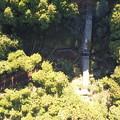 山奥の堰堤付近空撮写真