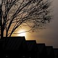 Photos: 真冬の日没