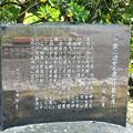 Photos: 芭蕉句碑