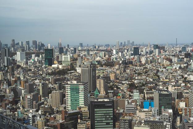 恵比寿ガーデンプレイスからの景色