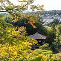 Photos: 銀閣寺の紅葉1