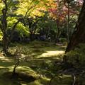Photos: 銀閣寺の紅葉2